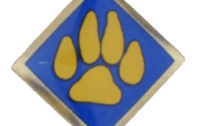 Boy Scouts of America Recalls Cub Scout Activity Pins